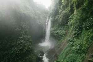 amazing waterfall with lush foliage on rocks