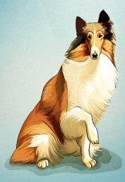Caderneta de Cromos Contra Ataca - Lassie