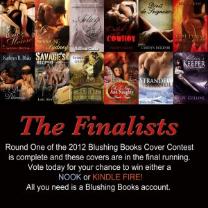 Blushing Books Cover Contest 2012