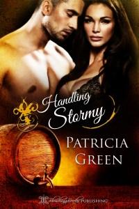 handlingstormy_cover_full