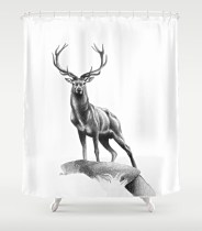all-muscle-shower-curtain2