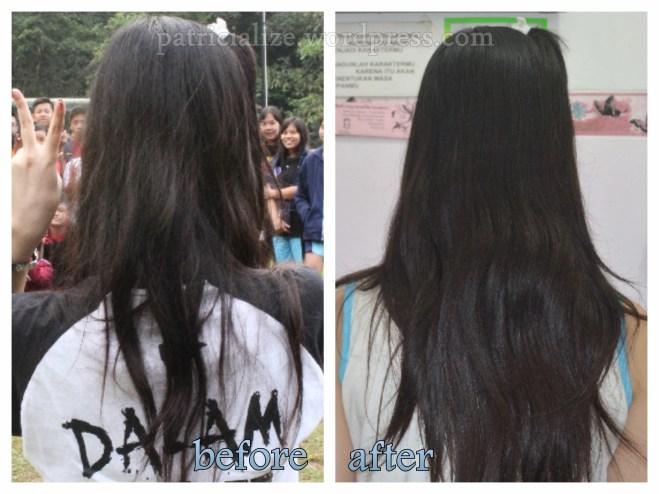 Coconut Oil Hair Mask   My Dandelion Dreams