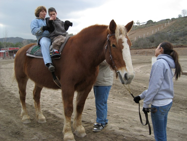 Riding instructor Eileen Johnstone helps Daniel Harvey balance himself on Callie, the brown mare.