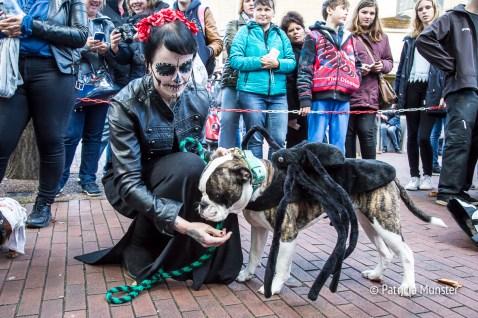 halloween-dog-parade-zoetermeer-patricia-munster-6