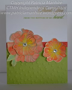 #CTMH Wavy Blooms and Watercolour