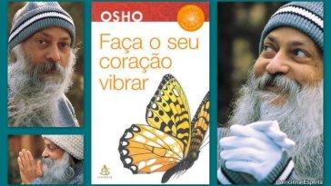 2011 10 018 - Faça Seu Coração Vibrar - Livro