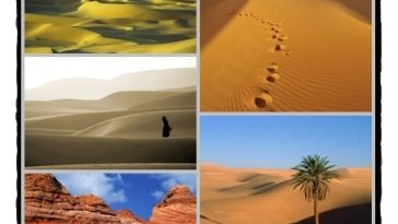 desertos - Os desertos da vida