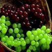 casca uva web - Emagreça E Cuide Da Saúde Com A Farinha de Uva!