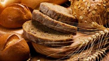 BLOG14 - Alimentos Integrais Emagrecem?