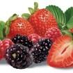 Frutas1 - Frutas vermelhas - Parte II