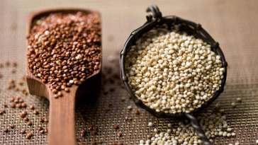 Captura de tela inteira 10062013 201934 - Quinoa: Usina de Proteínas!