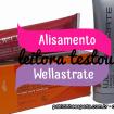 Wellastrate resenha - Leitora testou - Alisamento Wellastrate
