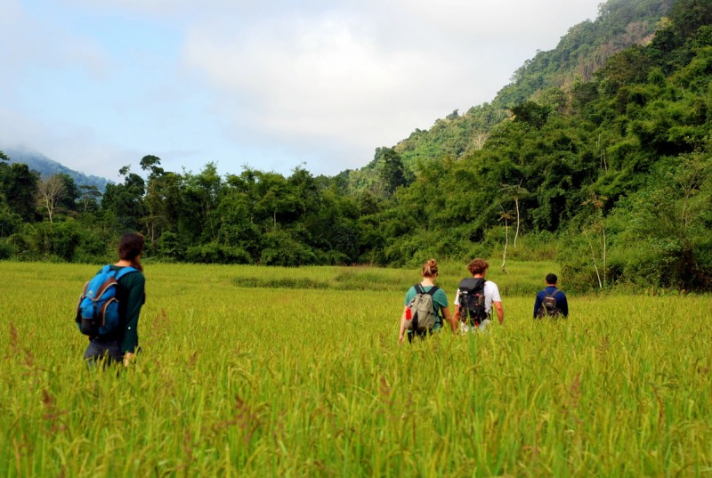 Nam Ha, hiking in the rice fields