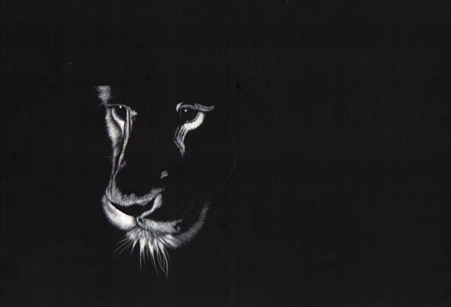 Lion_01 (Small)