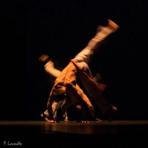 Capoera - Artshow - Flou de bougé volontaire