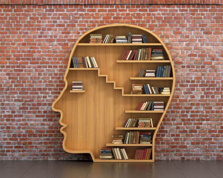 Knowledge mind of good and evil image showing a carved human head of wood with books inside.