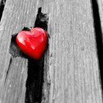 he has put eternity in man's heart showing a red heart in a tree