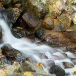 En hakkore showing a flowing stream
