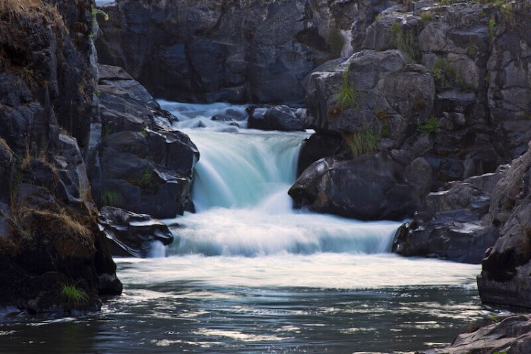 river of His pleasures showing a flowing stream