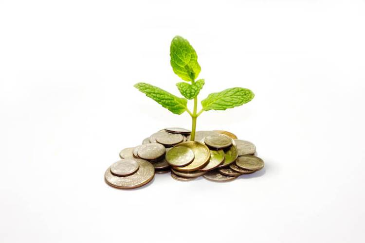 seek ye first the kingdom of God sowing a small plant with money around