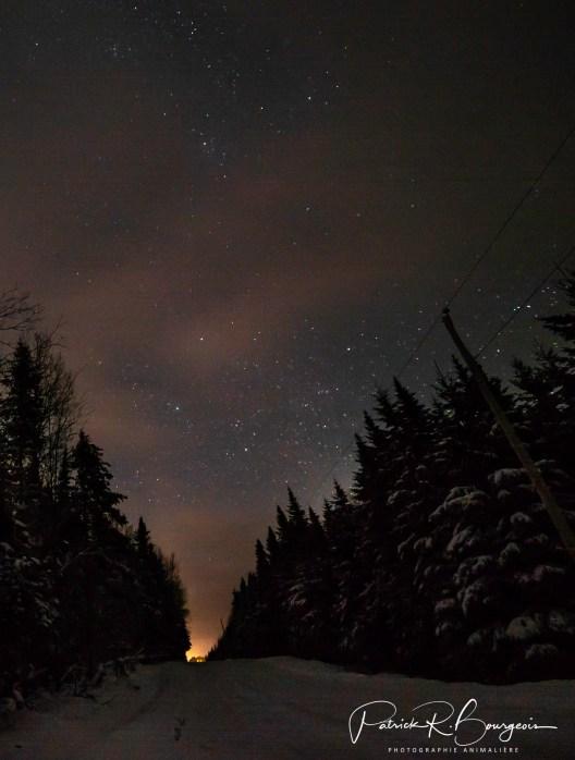 chemin nuit2