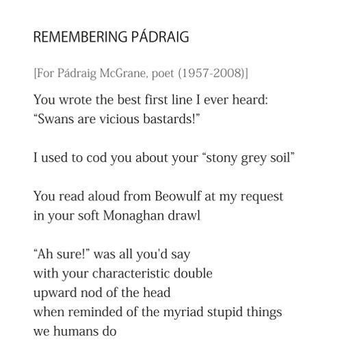 Remembering Pádraig - extract, by Patrick Stack