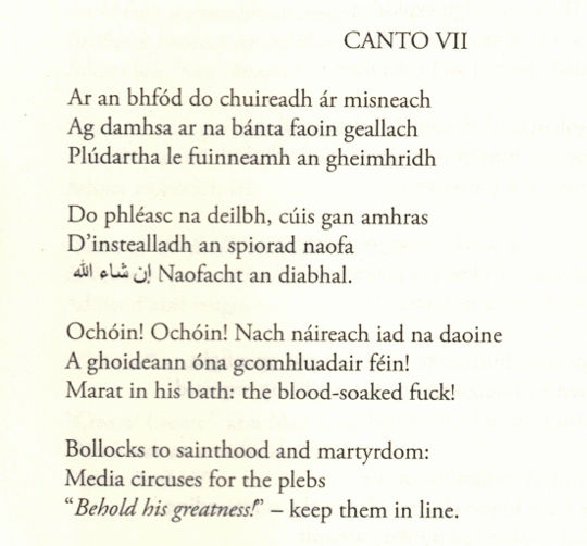 The Day The Revolution Came - Canto VII (extract) by Patrick Stack