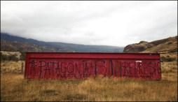 Anti-dam graffiti along the Carretera Austral Photograph by Michael Hanson