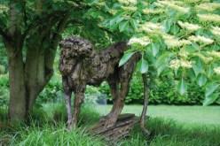 Cheetah in a private garden ©2013