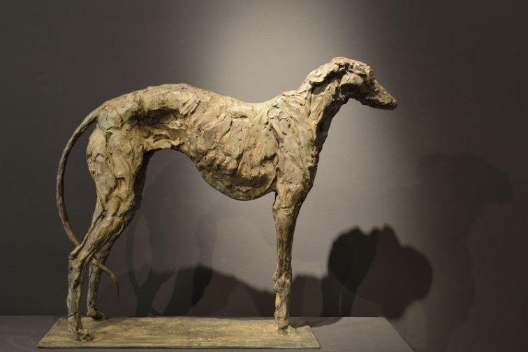 Greyhound 70x65cm bronze 1/8 ©2012