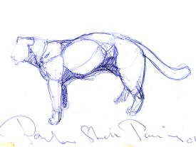 Panther study 40x30cm pen on paper ©2001