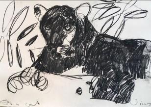 Big Cat 100x70cm charcoal on paper ©Villas 2019