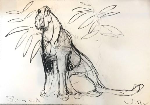 Big Cat (sold) 100x70cm charcoal on paper ©Villas 2019