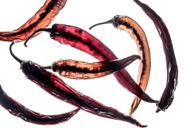 Durchleuchtete Chilis