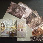 woodland-chic-postcards