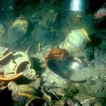 La cápsula del tiempo sumergida bajo los mares de Andalucía