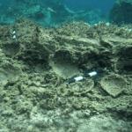 Hallan ruinas submarinas en Grecia