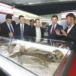El Museo do Mar presume de fondos