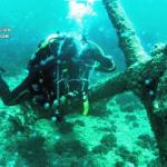 Líderes en la 'caza' de los ladrones de tesoros bajo el mar