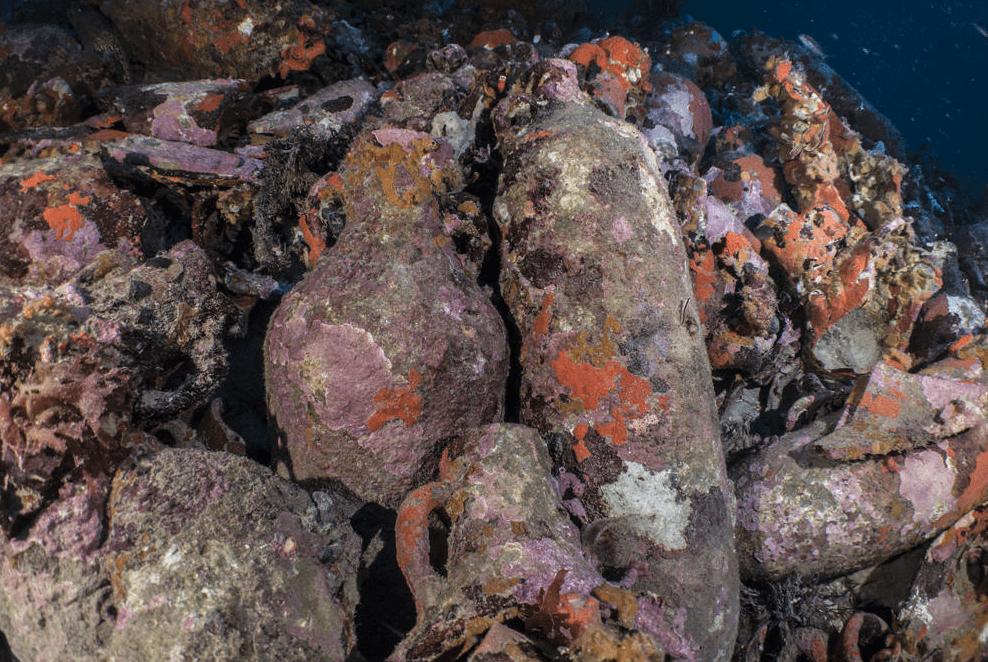 El pecio romano hallado en Cabrera, uno de los mejor conservados del Mediterráneo occidental