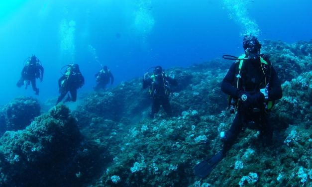 Así protege la Armada de los piratas los tesoros submarinos