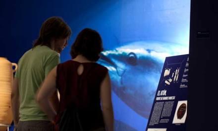 Más de 35.000 han visitado la muestra sobre arqueología subacuática del Museo de Almería