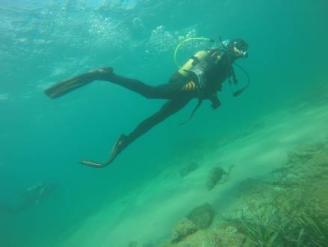 El Marq desvela los tesoros del mar en Torrevieja