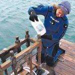 De navegantes y piratas – La corbeta Swift