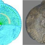 Astrolabe: Shipwreck find 'earliest navigation tool'