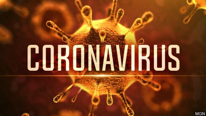 A digital image of coronavirus