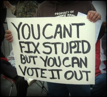 you-can-vote-out-stupid