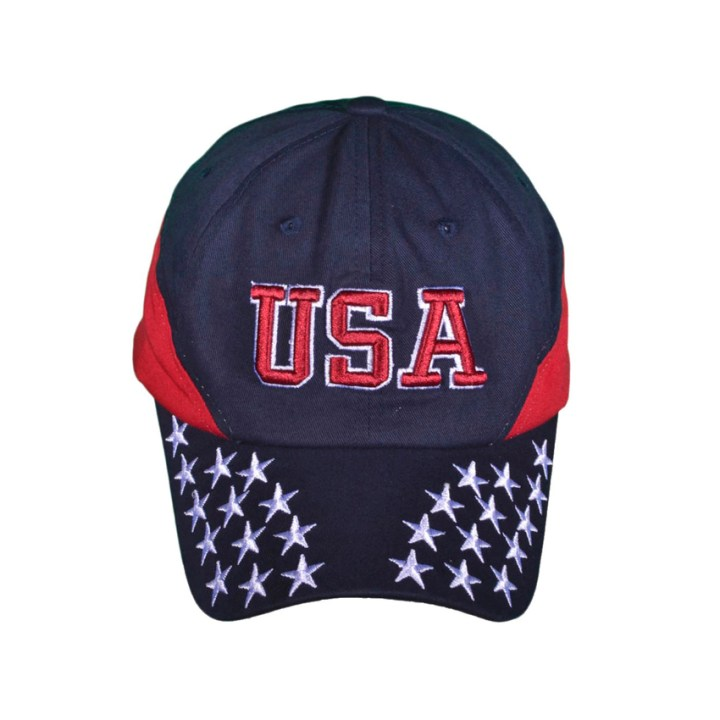 USA Dad Hat 3-d