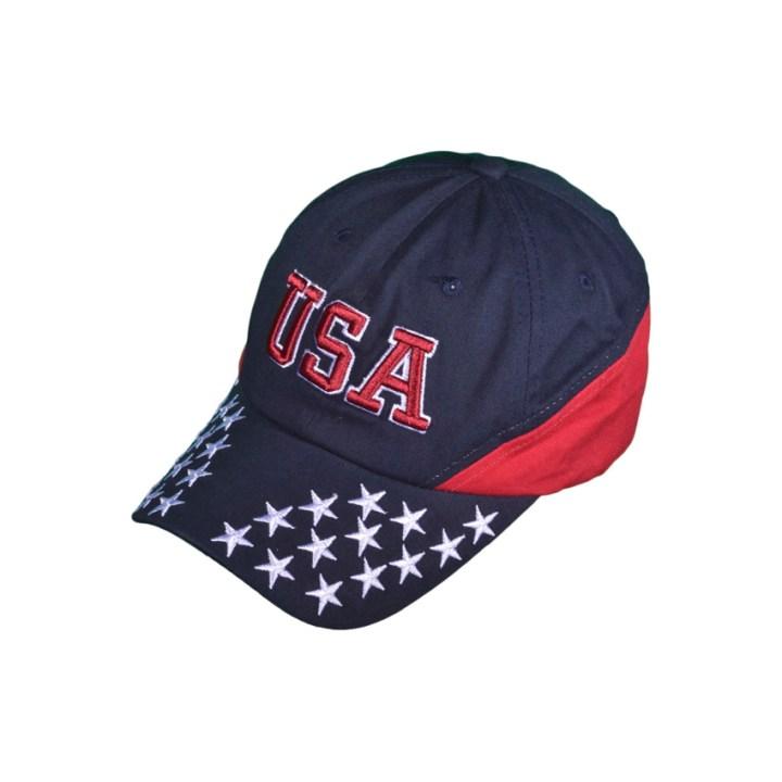 USA Dad Hat