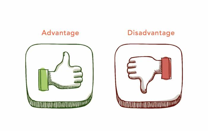 Image result for advantage vs disadvantage